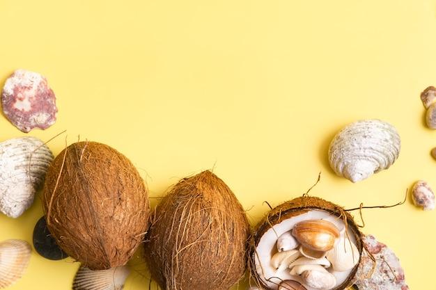 Noix de coco et coquillages sur fond jaune. thème marin.