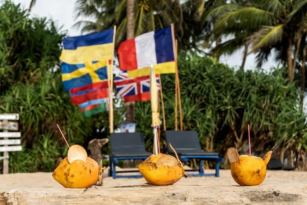 Noix de coco dorées sur la plage avec des drapeaux de différents pays