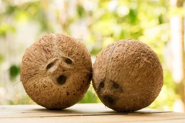 Noix de coco entière sur la surface de la nature.