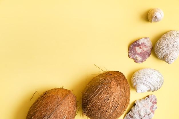 Noix de coco entières et coquillages sur fond jaune. thème marin.