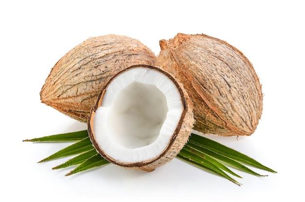 Noix de coco avec feuille isolé sur fond blanc