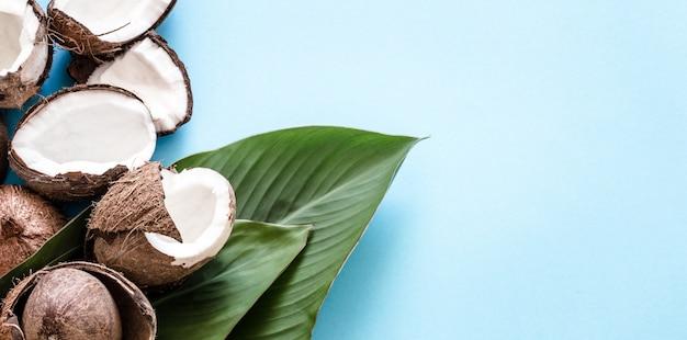 Noix de coco avec des feuilles tropicales sur un mur bleu. appartement