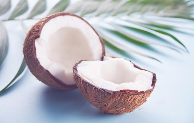 Noix de coco sur fond bleu avec feuille de palmier