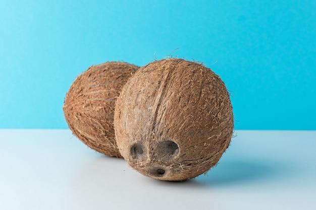 Noix de coco mûres sur fond bleu