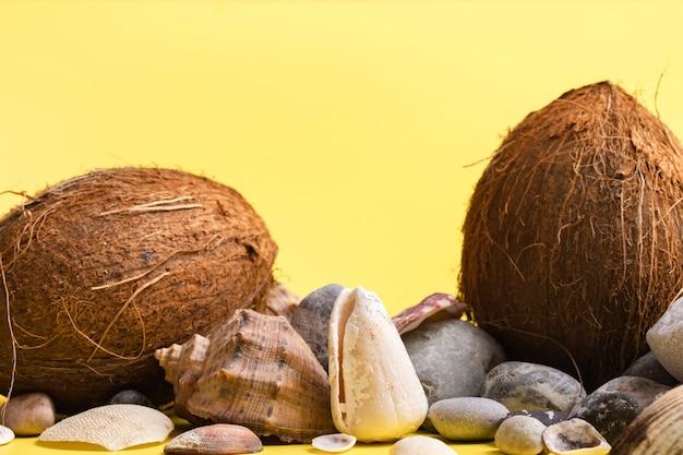 Noix de coco, roches et coquillages sur fond jaune .thème marin
