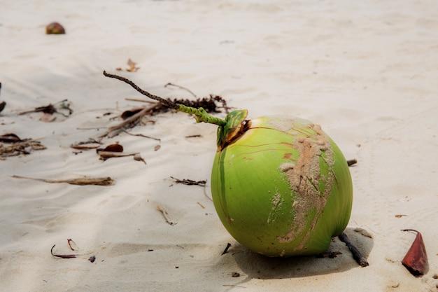 Noix de coco sur le sable.