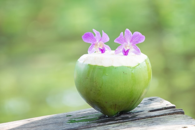 Noix de coco vertes fraîches