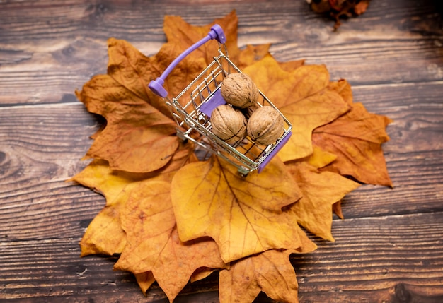 Noix feuilles sèches bois, concept automnal