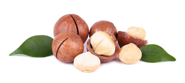 Noix de macadamia aux feuilles