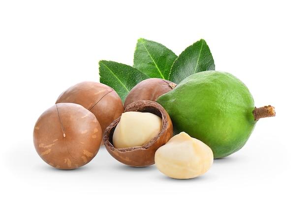Noix de macadamia avec des feuilles isolé sur fond blanc.