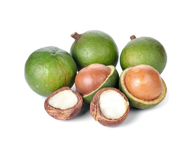 Noix de macadamia fraîches sur fond blanc