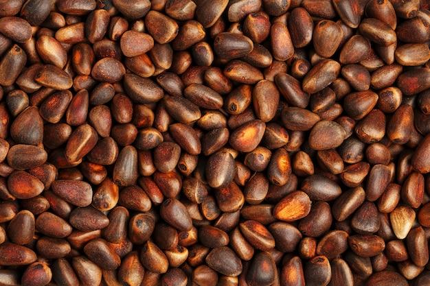 Noix de pin dans le gros plan de la coquille. texture macro