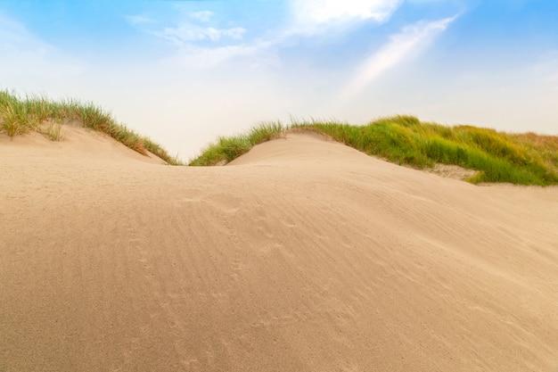 Le nom mini de désert en thaïlande est had hong dans la province d'ubonratchathani