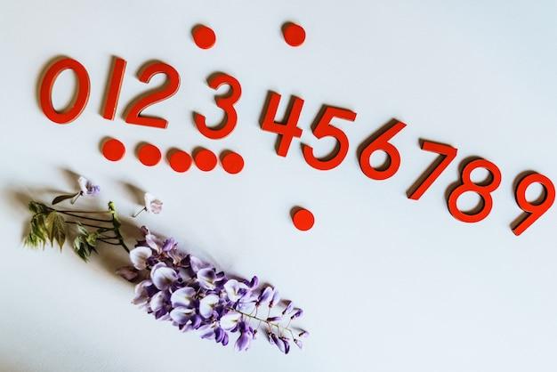 Nombres de bois de 0 à 9 isolé sur blanc
