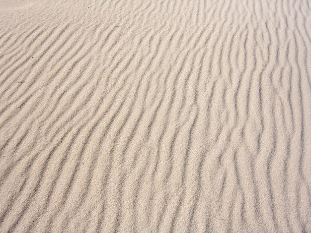 Nombreuses ondulations de sable sur la plage façonnées par l'influence du vent.