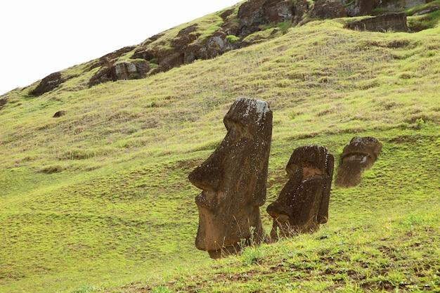 De nombreux vestiges de l'énorme moaï sur la pente du volcan rano raraku, île de pâques, chili
