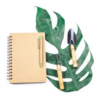 Note de livre et feuille verte sur fond blanc isoler.
