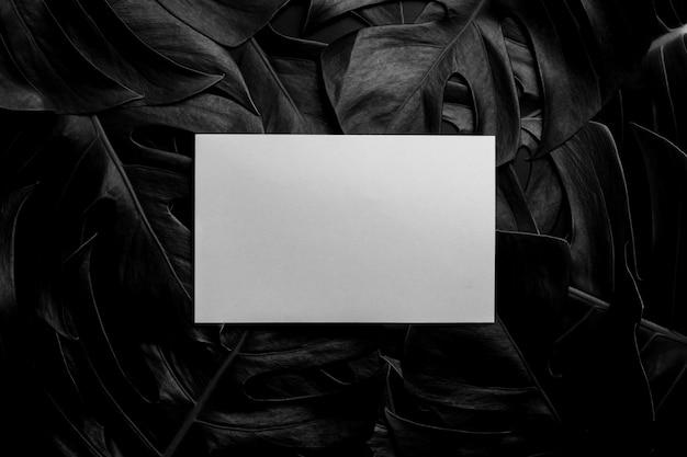 Note de papier blanc sur les feuilles dans le noir - style vintage