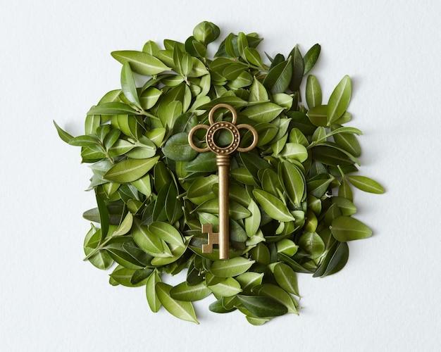 Notion de destination. clé dorée de l'appartement, de l'appartement, du futur, etc. clé dorée vintage représentée au milieu sur fond de feuilles vertes.
