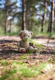 Nounours brun abandonné assis au milieu de la forêt