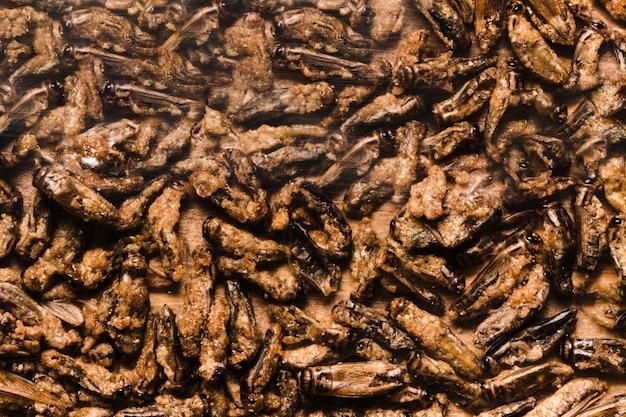 Nourriture asiatique larves comestibles frits