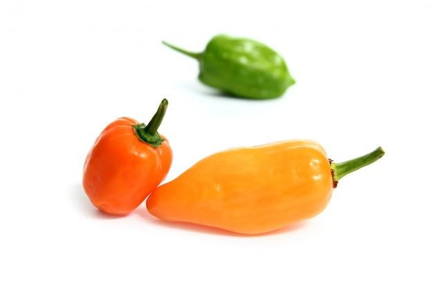 Nourriture culinaire capsicum agriculture mélange de goûts