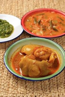 Nourriture indonésienne célèbre gulai tunjang/gulai kikil à base de tendon de boeuf à la sauce de noix de coco.populaire comme nasi padang ou padang food à côté de rendang et sambal lado mudo