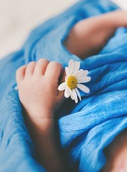 Le nouveau-né tient une fleur de camomille. mise au point sélective. gens.