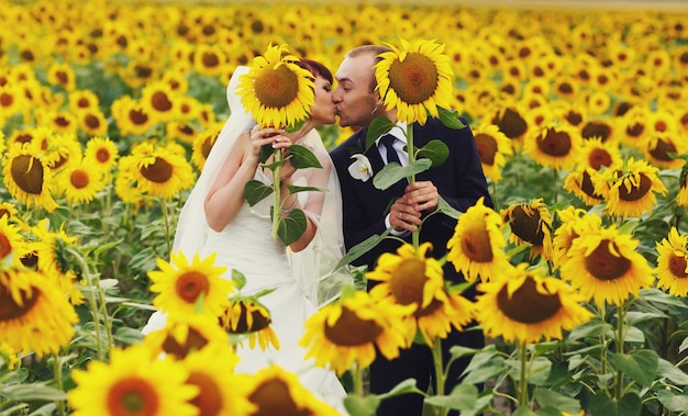 Les nouveaux mariés embrassent tenant des tournesols dans leurs mains