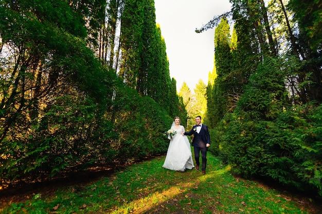 Les nouveaux mariés se tiennent la main et courent dans le parc entre des rangées d'arbres pour s'amuser