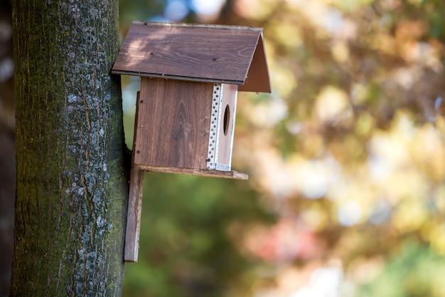 Nouvelle maison d'oiseau en bois brun ou nichoir attaché au tronc d'arbre en automne parc ou forêt sur fond de bokeh flou ensoleillé jaune doré. protection de la faune, faites-le vous-même concept.