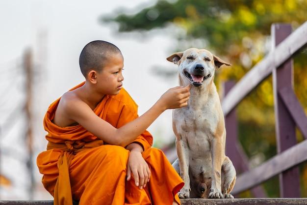 Novices et chien sur un pont en bois