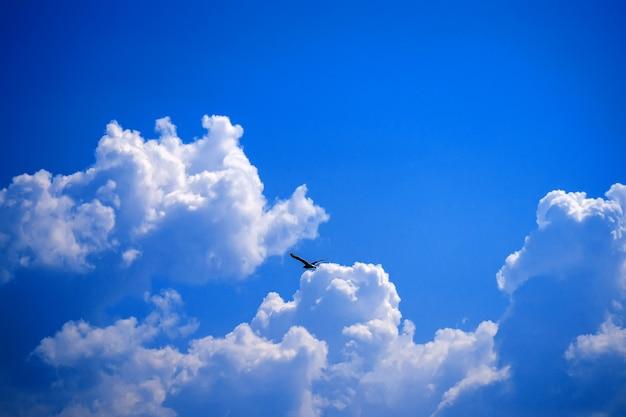 Nuage dans le ciel bleu