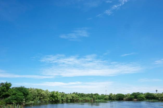 Nuages blancs et ciel bleu avec des arbres de paysage magnifique vue utiliser pour la publicité