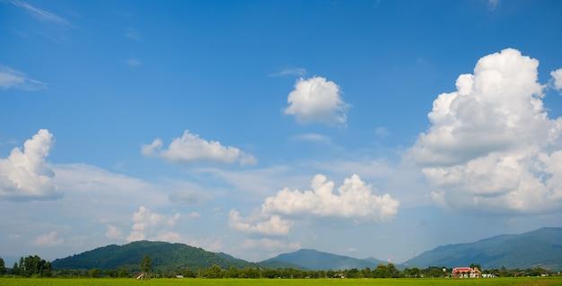 Les nuages blancs ont une forme et une montagne étranges