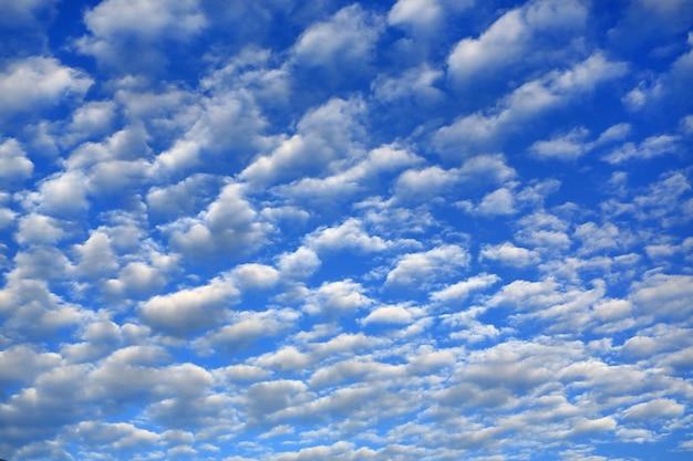 Nuages gonflés sur fond de ciel bleu