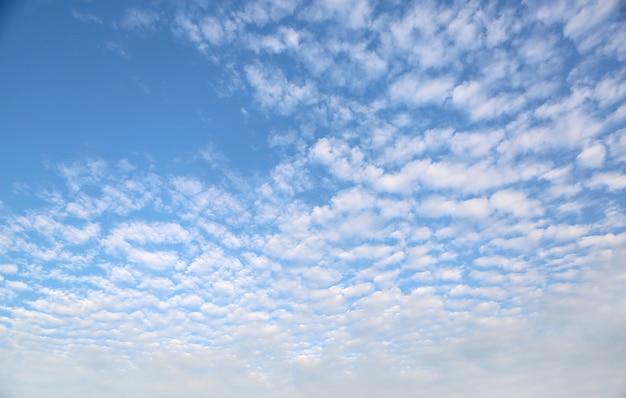 Nuages gonflés sur fond de ciel bleu.