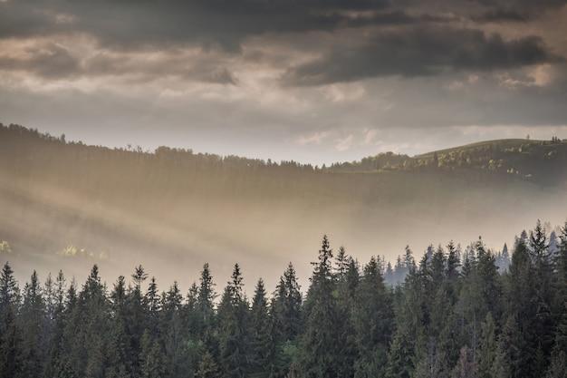 Nuages d'orage sur les montagnes et la forêt au coucher du soleil
