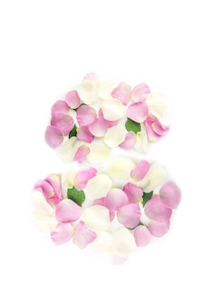 Numéro 8 fabriqué à partir de pétales de fleurs de rose pastel sur fond blanc. composition de fleurs de printemps à plat.