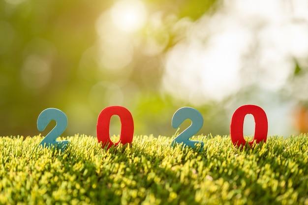 Numéro de couleur 2020 au-dessus de l'herbe verte dans l'arrière-plan flou de jardin