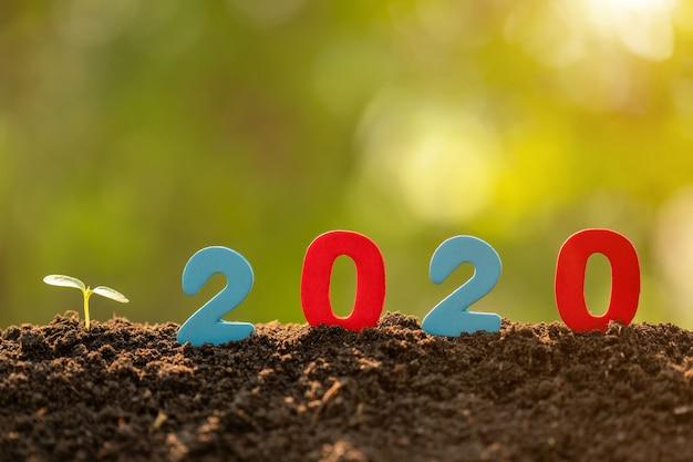 Numéro de couleur 2020 et de jeunes pousses vertes poussant dans le sol en arrière-plan flou de jardin