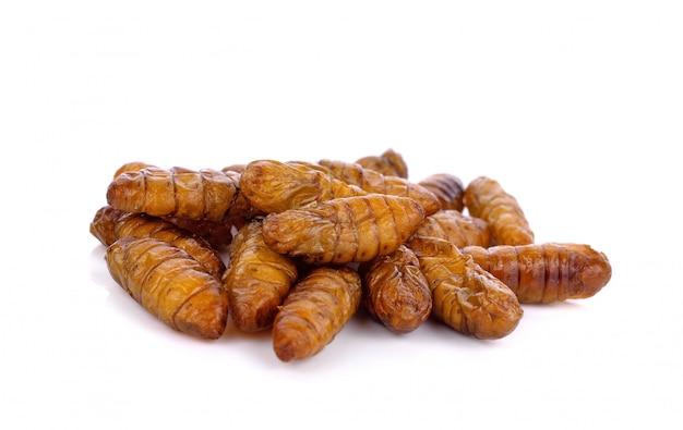 Nymphes de vers à soie frits sur fond blanc