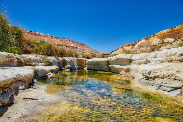 Oasis d'eau dans le désert