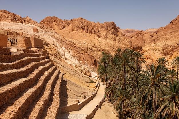 Oasis de paysage chebika dans le désert du sahara.