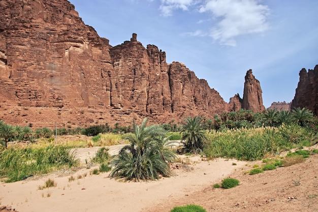 L'oasis de wadi disah, canyon d'al shaq, arabie saoudite
