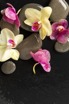 Objets de thème d'orchidée de spa