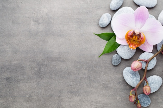Objets de thème spa orchidée sur fond gris.