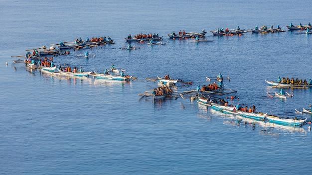 Observation des requins baleines par oslob et pêcheurs captivant des requins baleines gigantesques