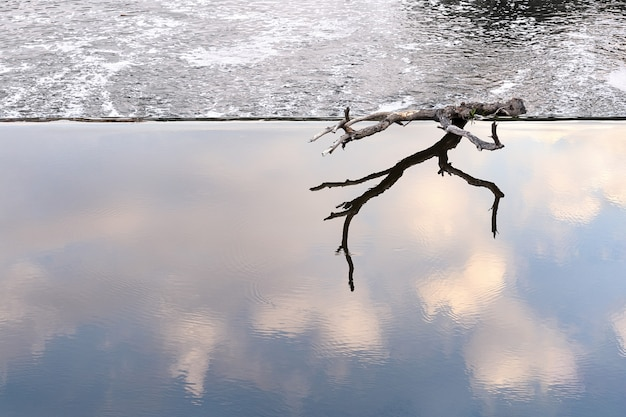 Un obstacle se trouve au bord d'un barrage dans une zone d'eau calme.