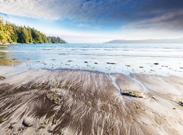 Ocean beach sur l'île de vancouver, colombie-britannique, canada